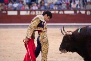 torero incornato ritorna nell'arena - Il torero Lopez Simon in uno delle sue corride
