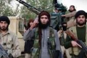 Social Media: un nuovo megafono per violenza e terrorismo?
