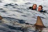 Open Water, la recensione del film drammatico