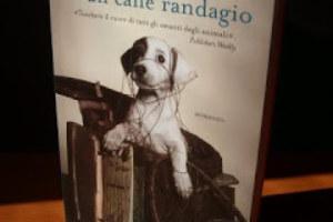 Memorie di un cane randagio (Recensione del romanzo di Ann M. Martin)