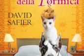 L'orribile Karma della Formica (Recenzione del romanzo di David Safier)