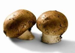 Champignon cremini - cibi velenosi che mangiamo quasi tutti i giorni