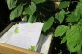 Consigli prodotti anti macchie e idratanti: recensione prodotti Vinoperfect.