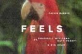 Feels di Calvin Harris potrebbe essere il riscatto di Katy Perry dopo il flop Witness?
