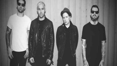 Fall Out Boy The Last of the Real Ones