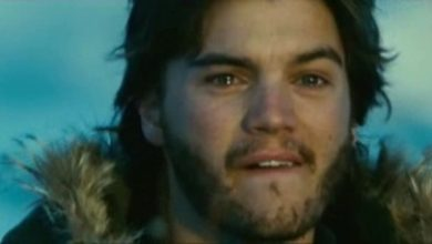 Into the wild recensione