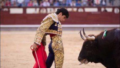 Lopez Simon - torero incornato ritorna nell'arena
