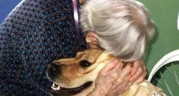 un cane in casa aiuta a combattere l'ansia