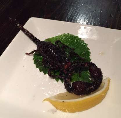 scorpioni ristorante giapponese