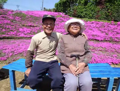 marito premuroso ha piantato migliaia di fiori per la moglie