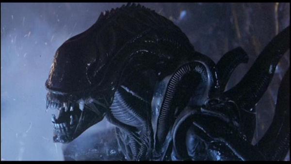 I Migliori Film Horror di Sempre - Alien 1979