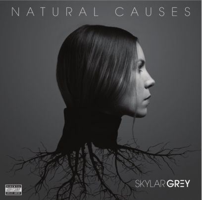 Skylar Grey & Eminem Kill For You - Natural Causes Album