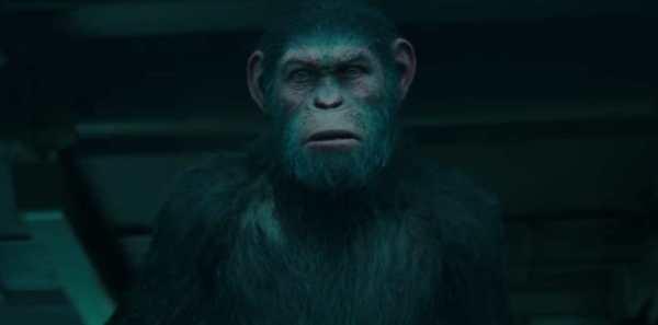 Cesare in War - Il Pianeta Delle Scimmie