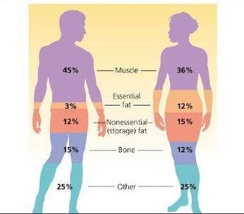 percentuale di grasso corporeo per vedere la definizione muscolare
