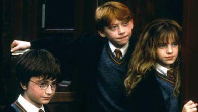 Harry Potter e la Pietra Filosofale libro