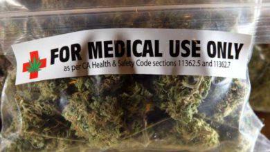 Epilessia Cannabis come medicinale