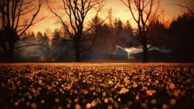 Canzoni da ascoltare in autunno