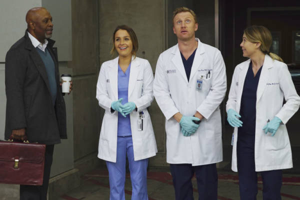 Grey's Anatomy 14esima stagione