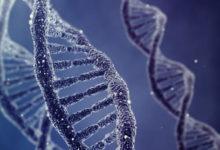 scoperta mutazioni genetiche