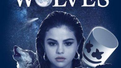 Selena Gomez Wolves audio