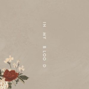 Shawn Mendes video In My Blood