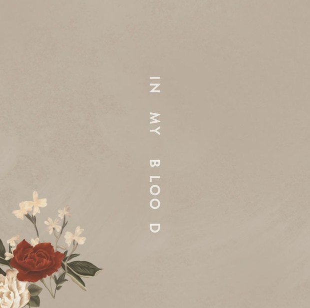 In My Blood canzone Shawn Mendes cover