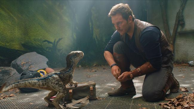 Chris Pratt foto Jurassic World: Il Regno Distrutto