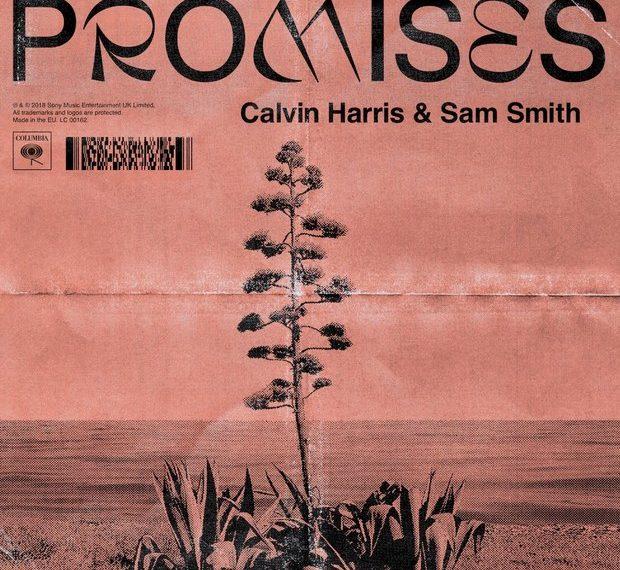 Promises Cover - Calvin Harris e Sam Smith