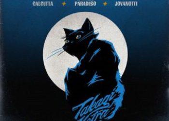 La luna e la gatta canzone cover