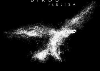 Imagine Dragons ft Elisa Birds