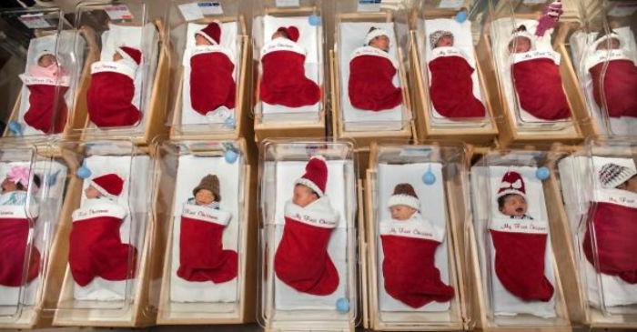 Alcuni bebè avvolti dalle calze natalizie