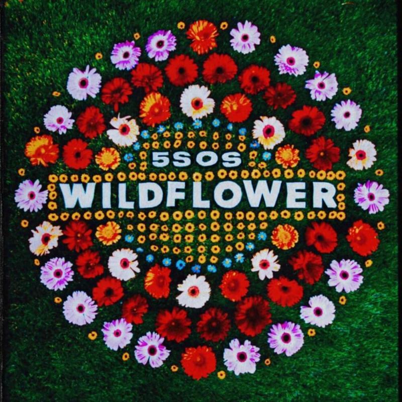 Copertina Singolo Wildflower 5 Seconds Of Summer