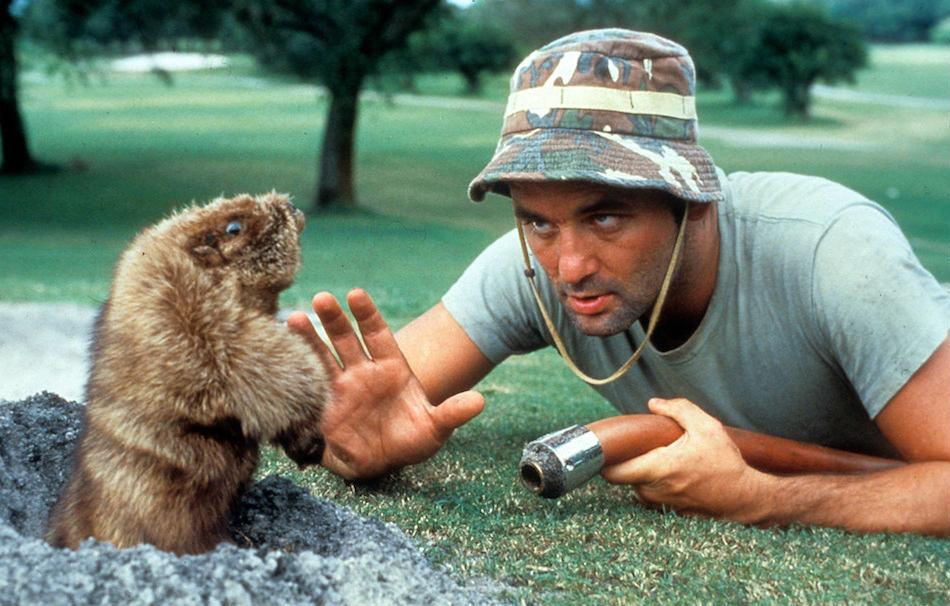 Bill Murray in Palla da golf