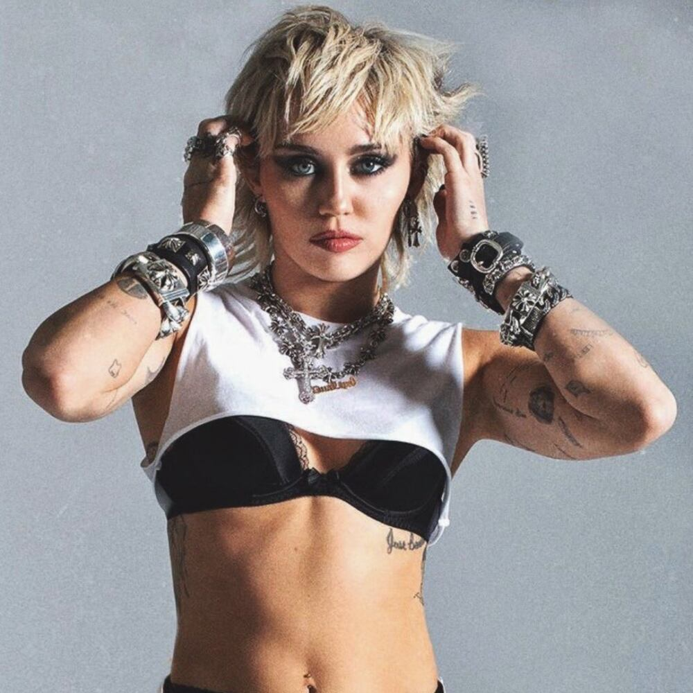Miley Cyrus Plastic Harts